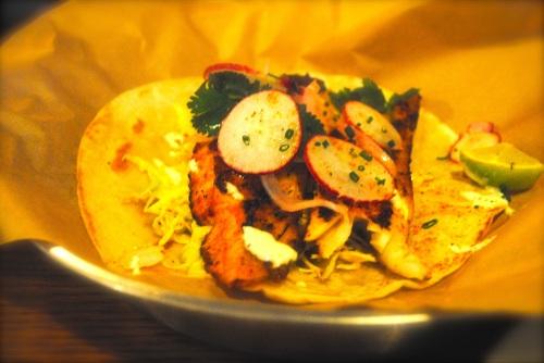 Jumbo fish taco, grilled